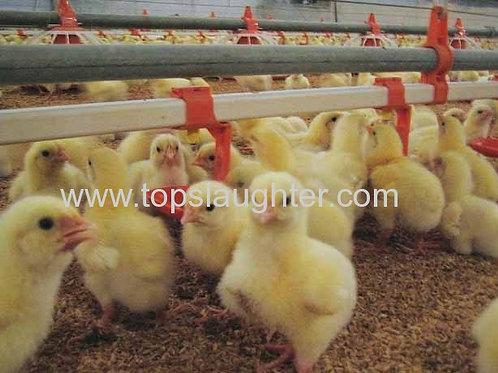 Chicken Farming Equipments Automatic Nipple Drink