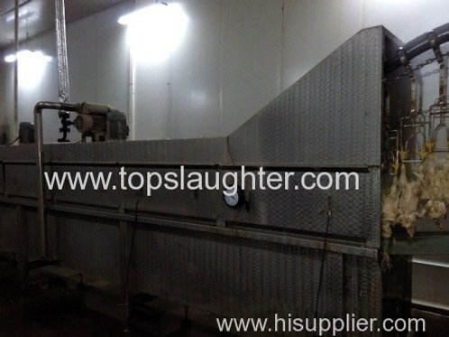 Poultry Processing Equipment. Scalding machine