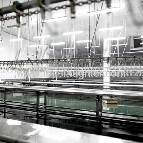 Turkey processing equipment portioning line