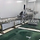 Thumbnail: Poultry Processing Equipment Chicken Feet Processing Line