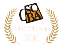 Soba Logo (Clear).png