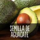 semilladeaguacate.png