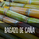 bagazodecaña.png