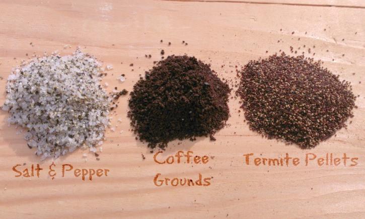 Termite-Pellets-II.jpg