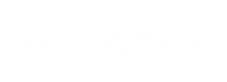 CS-branding-press-kit.png