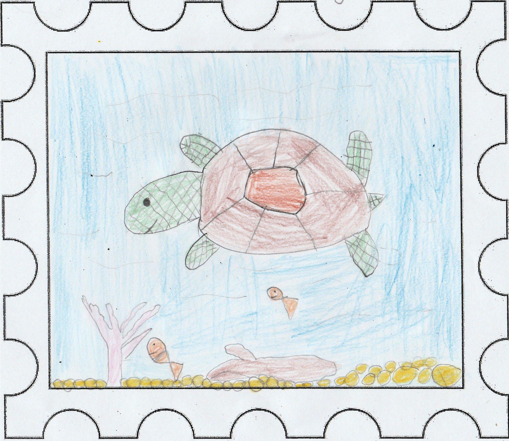 La tortue voyageuse