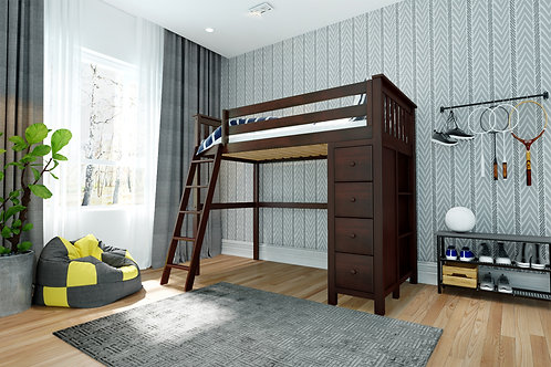 Space Saver: Twin size Loft Ladder, with Dresser-Bookcase