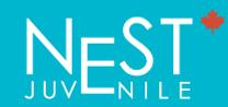 logo-nest.png