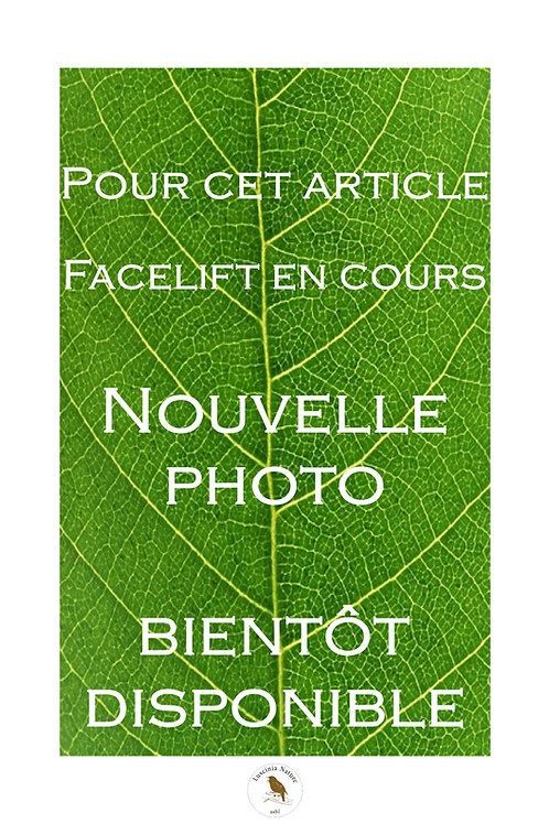 """Hôtel à Insectes Type """"Boite"""" GARNI"""