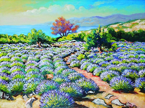 "80. Ivan Vlašić, ""Lavender Field"", 40x53,5 cm"