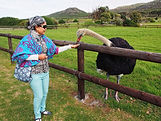 ทัวร์เคปทาวน์แอฟริกาใต้ราคาถูก
