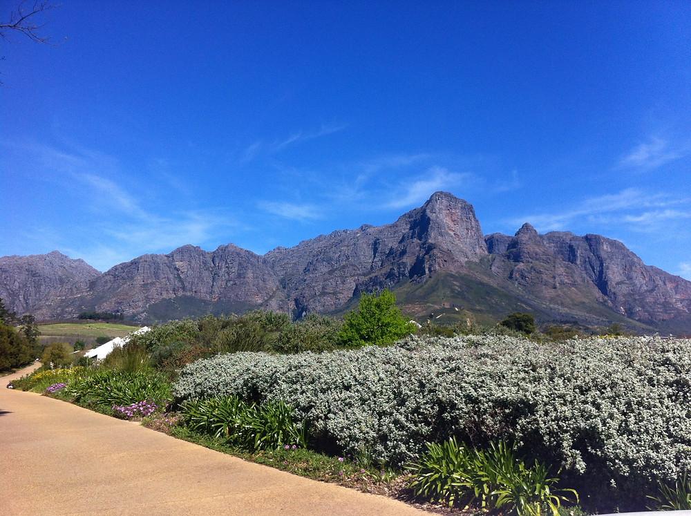 เที่ยวแอฟริกาใต้ Lucky Lion Tours