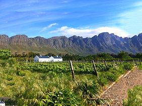 ทัวร์เคปทาวน์และเมืองผลิตไวน์แอฟริกาใต้ Lucky Lion Tours