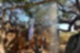 ทัวร์เคปทาวน์แอฟริกาใต้ดูBIG 10