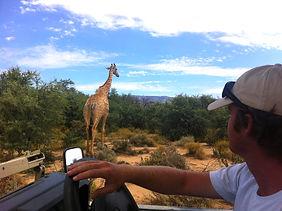 ทัวร์เคปทาวน์แอฟริกาใต้ Lucky Lion Tours