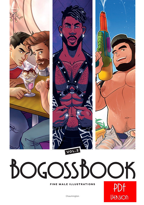 Bogossbook 2 - PDF Version