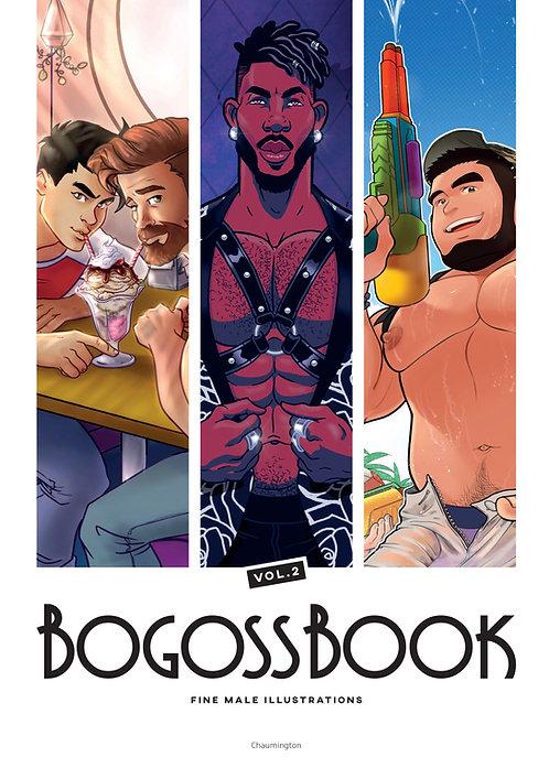 Bogossbook Vol. 2