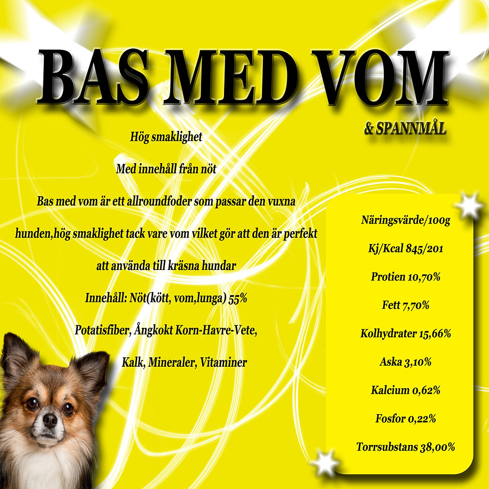 bas2.web.jpg
