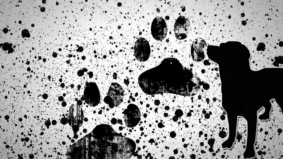 painting-paws-dog-puppies-wallpaper.jpg
