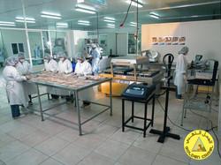 Production Site Picture (4)