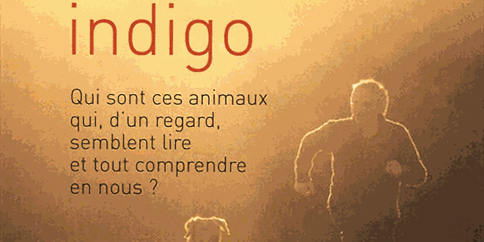 "Conférence «Animaux indigo"""