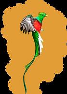 Logo%20CM_edited.png