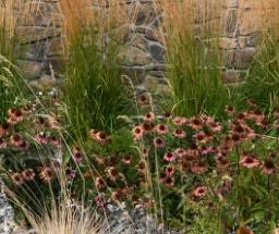 United Landscapes - Ironclad – 3400 Centennial
