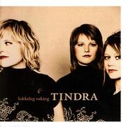 Tindra - Lukkeleg vaking.png