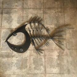 Holy Head Fish