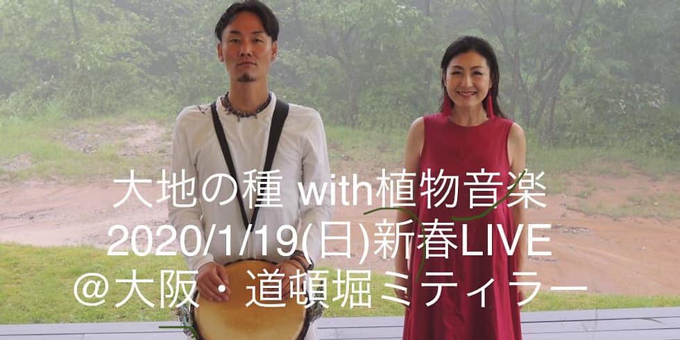 植物音楽ユニット・大地の種 with 植物音楽新春LIVE