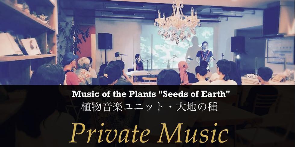 植物音楽ユニット・大地の種『秋のPrivate Music Live Party』