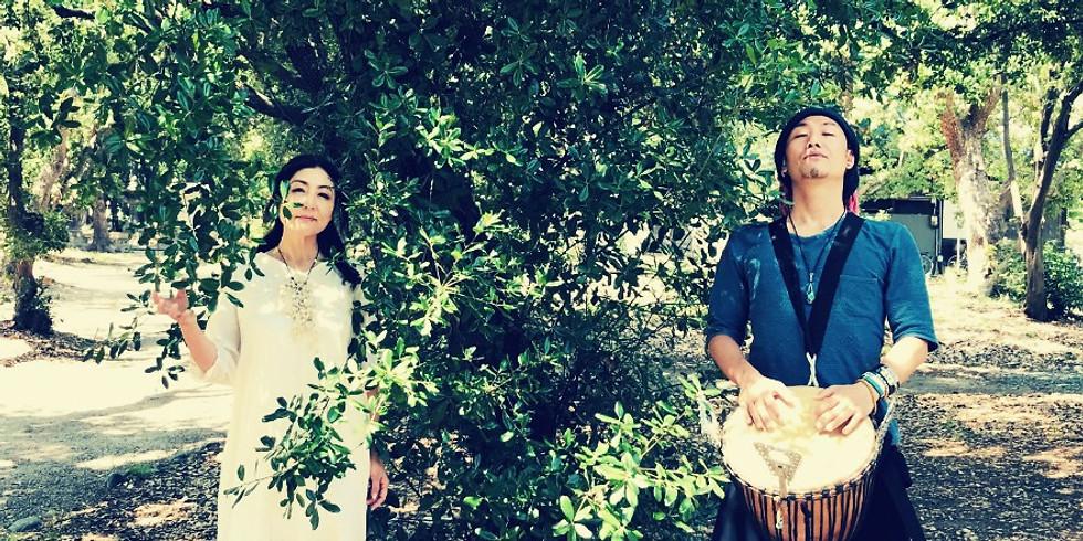 神戸 植物音楽ユニット・大地の種ワンマンコンサート『大地の種祭り』