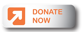 Donate-Now-Web-Icon.png
