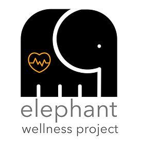 Elephant Wellness Project2.jpg