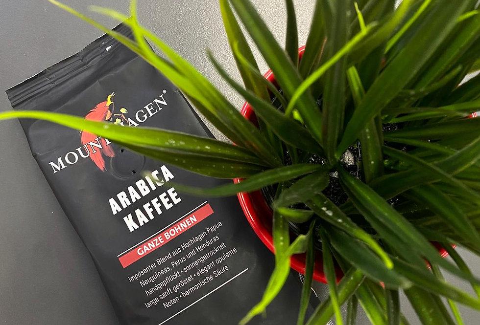 Arbica kafijas pupiņas 250g