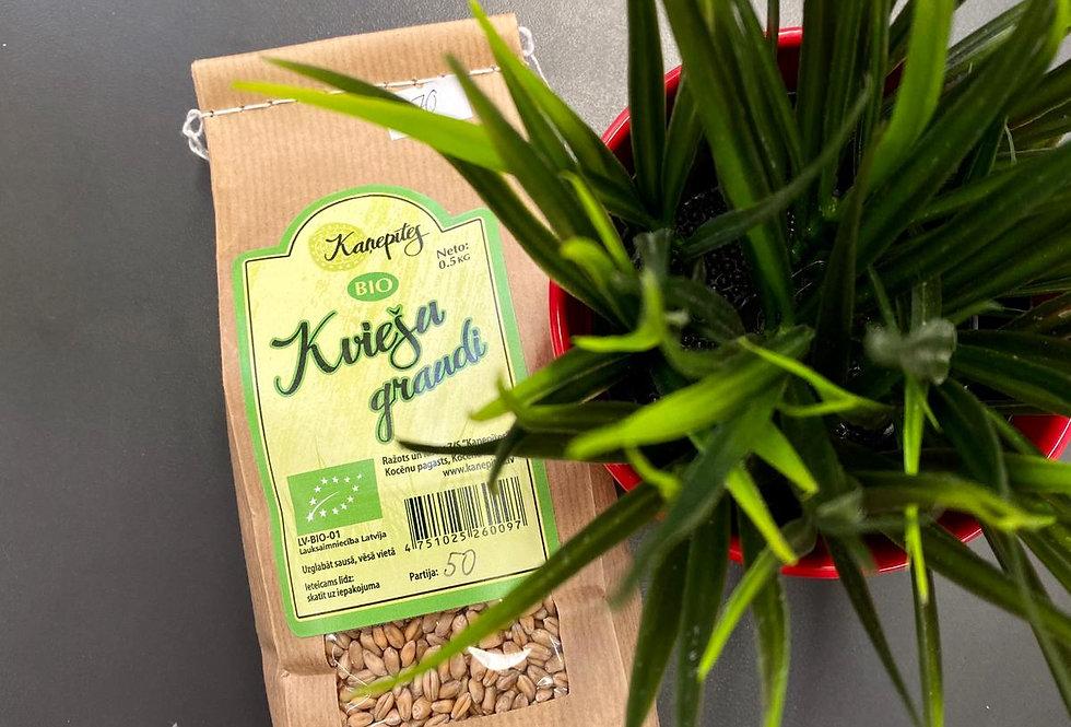 BIO Kviešu graudi 500g