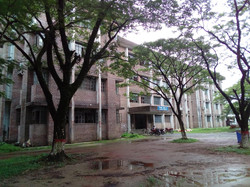 Academic building E: she was drenched and producing a pleasing petrichor