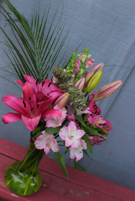 Pink Lily #1.JPG
