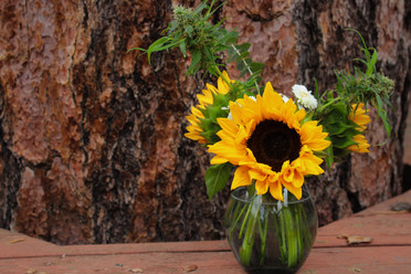 Mini Sunflower Bouquet