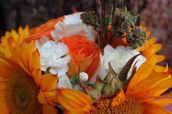 Autumn theme closeup #2.JPG