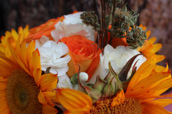 Autumn theme closeup #2.JPG