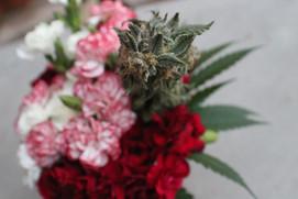 Pabst mini bouquet closeup #2.JPG