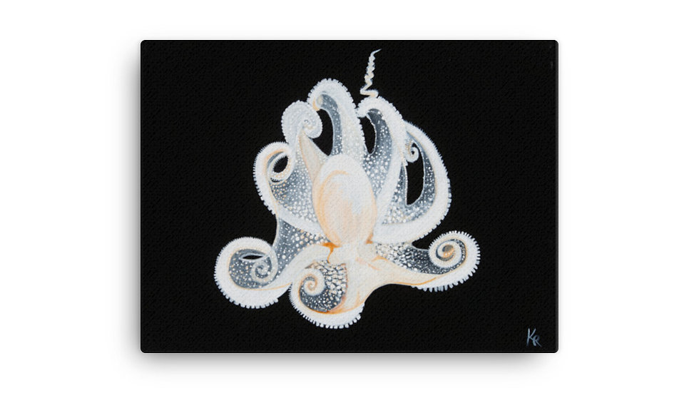 """White Octopus"" print on canvas copy"