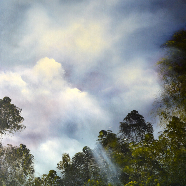 Above the Canopy oil on canvas 90 x 70 c