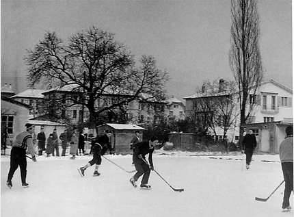 Eisbahn Linde.png