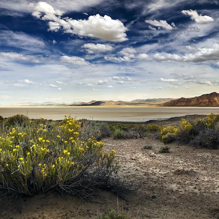 Trans Nevada Trek 2021 - The Wild Wild West