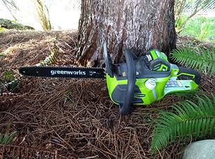 NWOL Overlanding Greenworks 16-Inch 40V