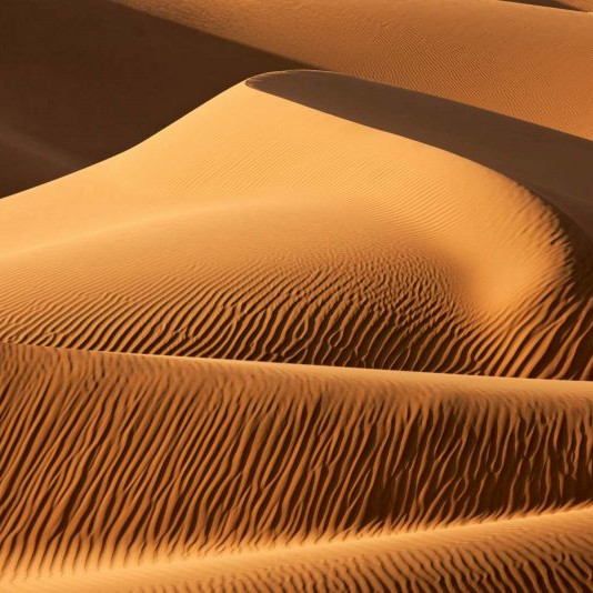 Moses Lake Sand Dune Adventure  - TBD