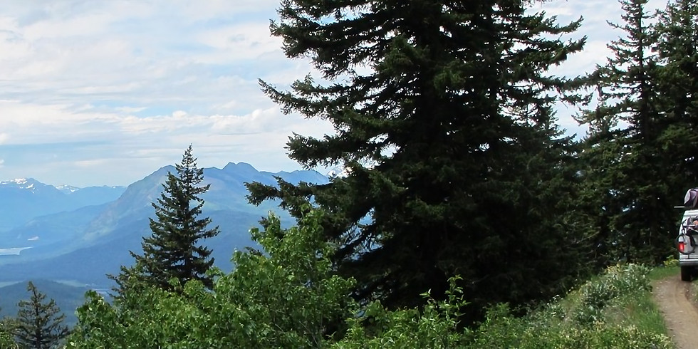 NWOL Guided Trail Ride: Sugarloaf Lookout - AM Half-Day Trail Ride