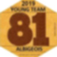 Logo YOUNG TEAM ALBIGEOIS.jpg